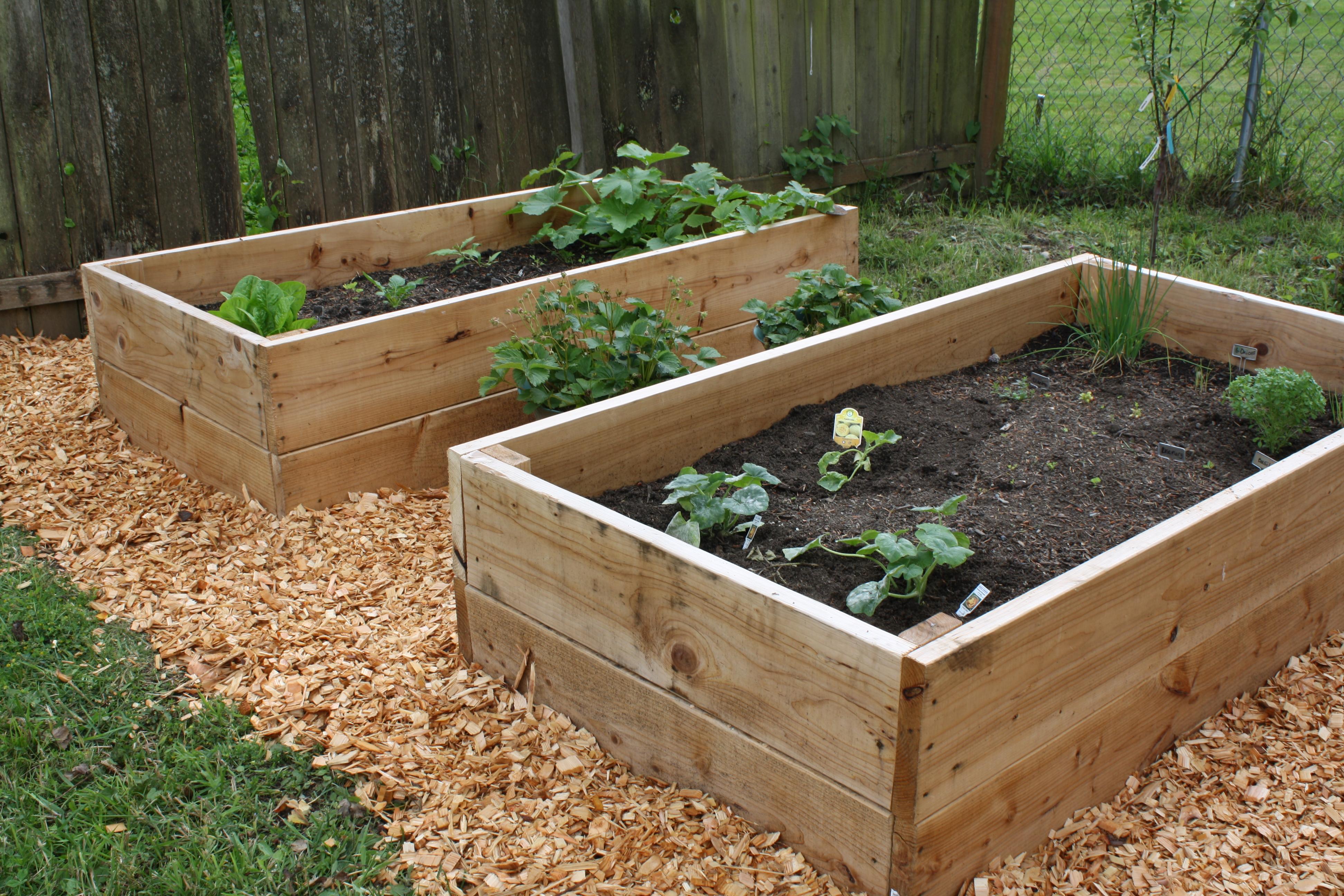 Garden flower bed progress ruetimestwo for Wooden flower bed ideas