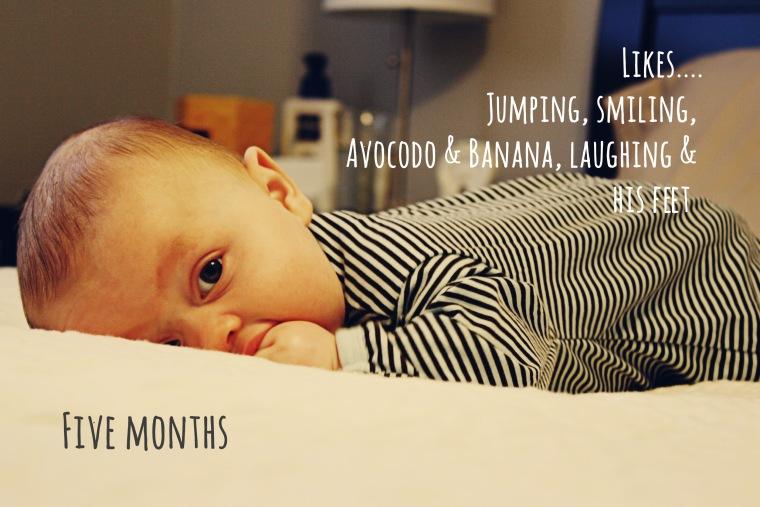 5-5 months